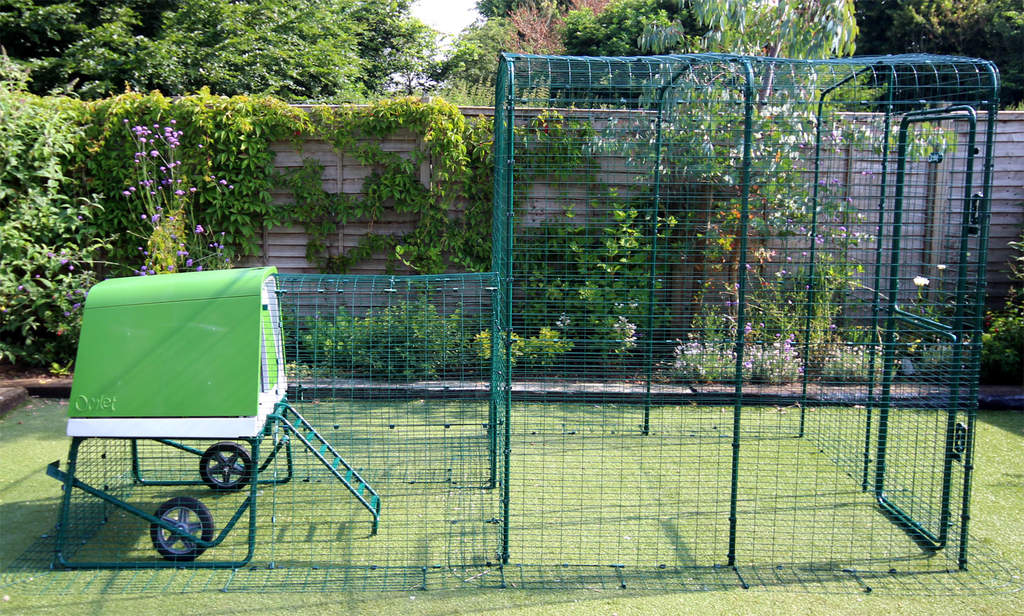 The Eglu Go UP with Run attached to a Walk in Chicken Run using a Connection Kit