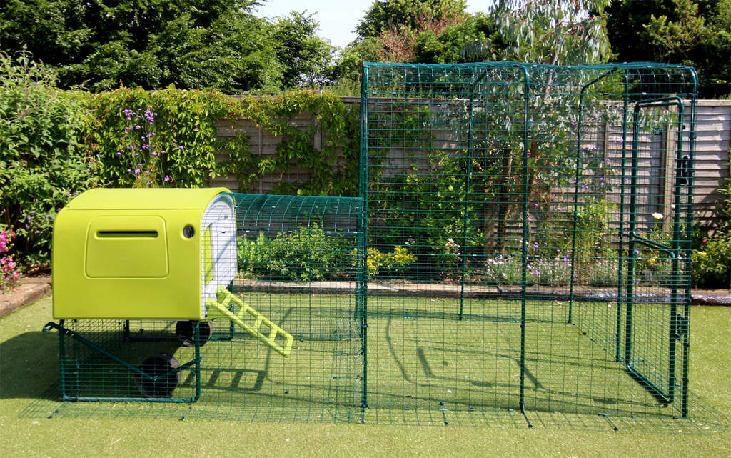 The Eglu Cube with Run attached to a Walk in Chicken Run using a Connection Kit