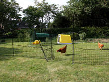 Omlet Chicken Fencing - 138ft  - Inc. Gate and Double Spike Poles