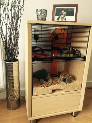 Omelet Qute cage with storage