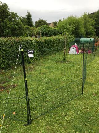 21m chicken fencing