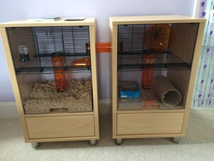 Two cages joined together with an extra tubes makes this cage fantastic