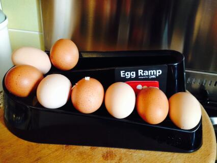 Hetties and Courgetties eggs lined up on the egg ramp!!