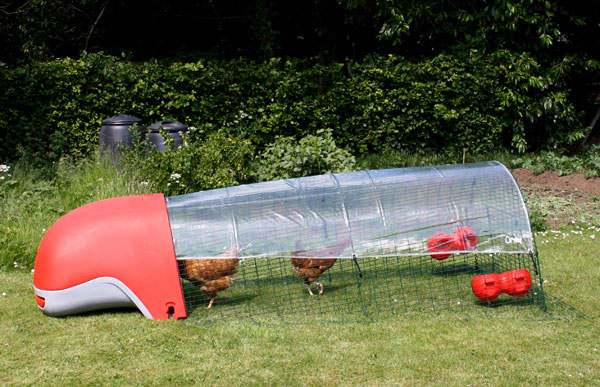 The Clear Cover Protects Your Chickens From The Wind And Rain