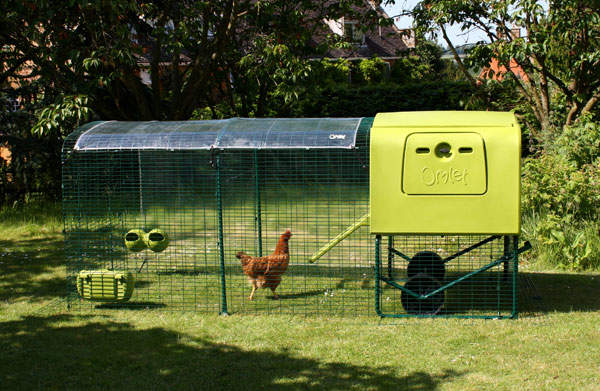 Clear Cover For Eglu Cube Chicken House
