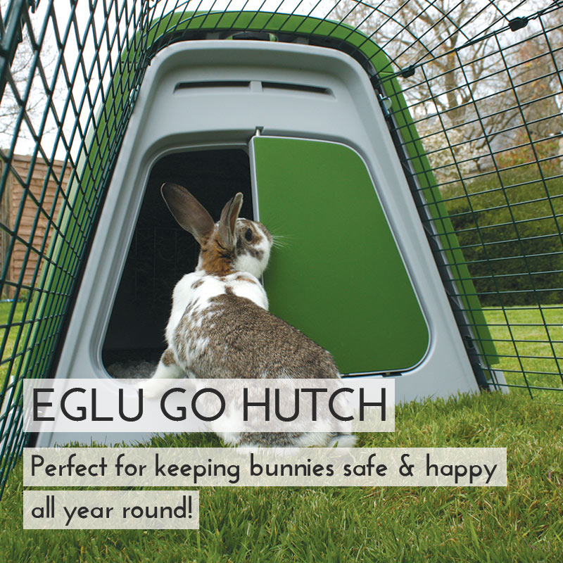 Main Eglu Go Rabbit Hutch Mobile US