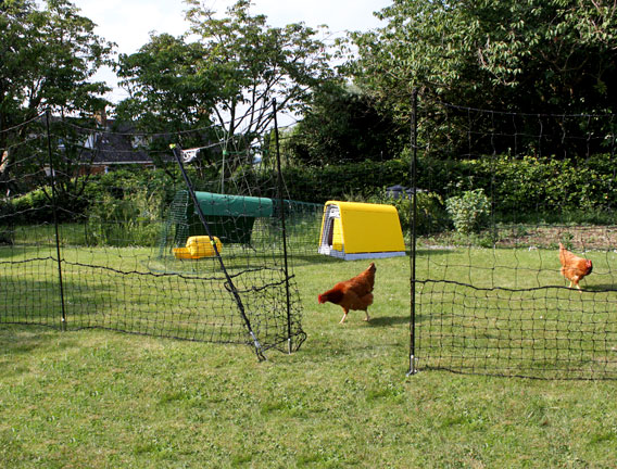 Omlet Chicken Fencing Chicken Keeping Store Omlet Us